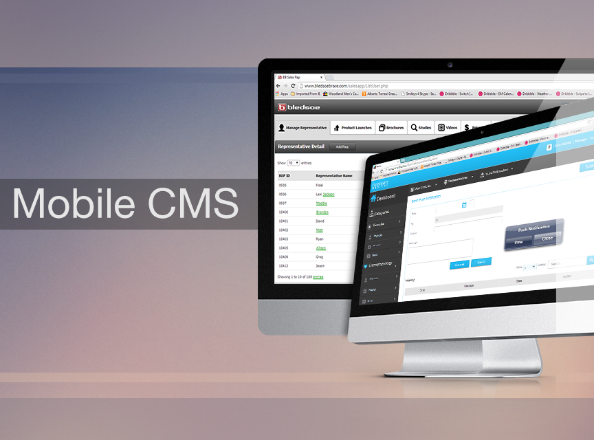 Mobile App Content Management System